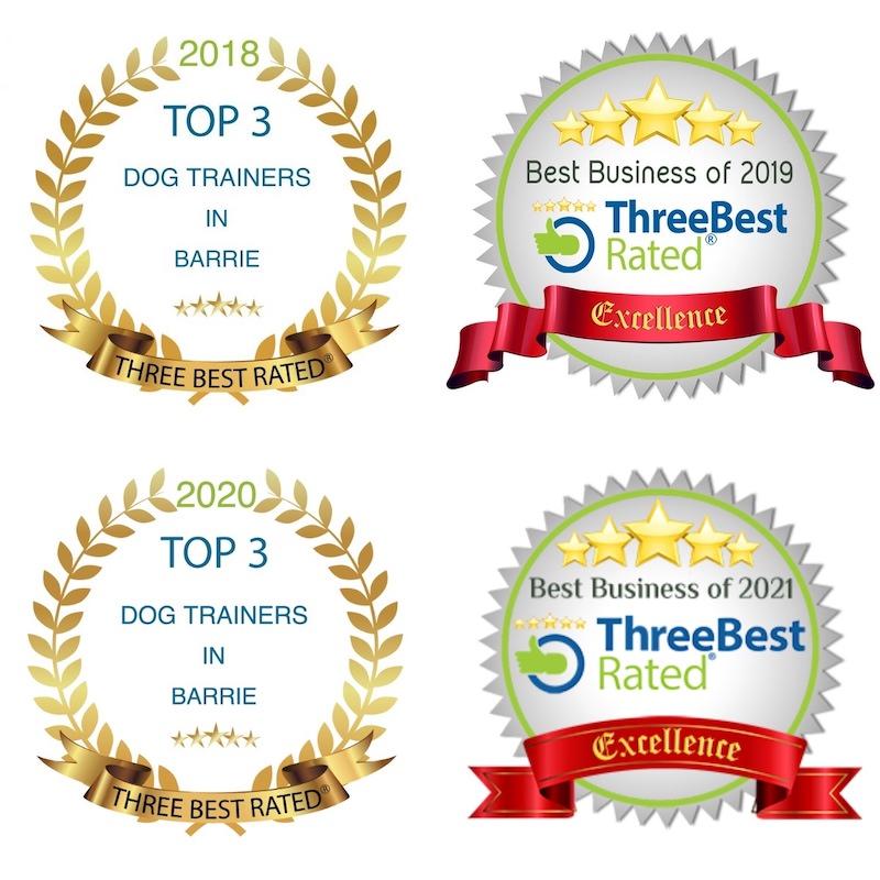 2021 Three Best Dog Trainers